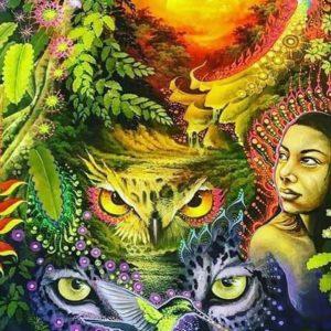 Xamanismo Coruja Onça Índia Psicodelismo