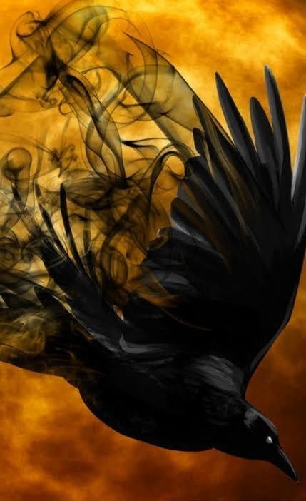 Ritual do Pássaro Cinza