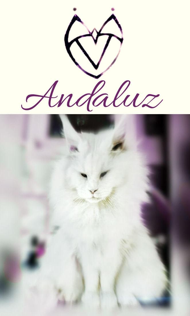 Arte - Andaluz - Magia do Caos